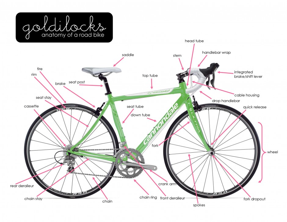 Bike Anatomy – Goldilocks Events